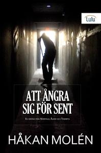 Att ångra sig för sent (e-bok) av Håkan Molén