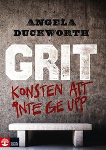 Grit : Konsten att inte ge upp (e-bok) av Angel