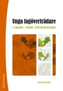 Unga lagöverträdare (e-bok) av Kerstin Nordlöf