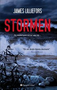 Stormen (e-bok) av James Lilliefors