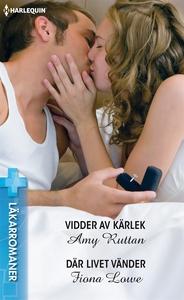Vidder av kärlek/Där livet vänder (e-bok) av Fi