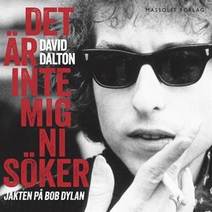 Det är inte mig ni söker - jakten på Bob Dylan