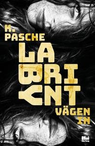 Labyrint - vägen in (e-bok) av Karin Pasche