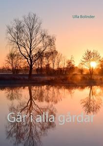 Går i alla gårdar (e-bok) av Ulla Bolinder