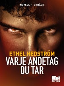 Varje andetag du tar (e-bok) av Ethel Hedström