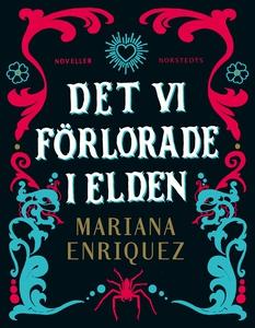 Det vi förlorade i elden (e-bok) av Mariana Enr