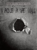 A hole in the wall