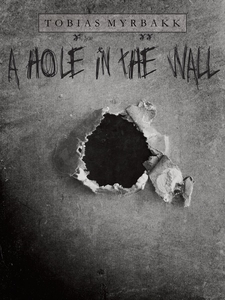 A hole in the wall (e-bok) av Tobias Myrbakk