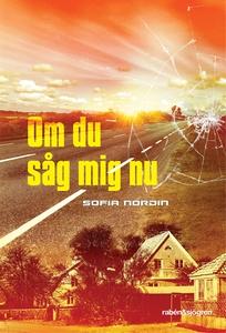 Om du såg mig nu (e-bok) av Sofia Nordin