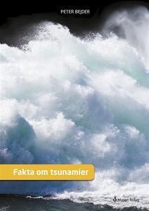 Fakta om tsunamier (e-bok) av Peter Bejder