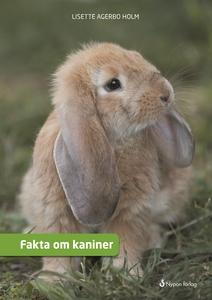 Fakta om kaniner (e-bok) av Lisette Agerbo Holm