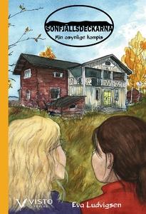 Min osynlige kompis (e-bok) av Eva Ludvigsen