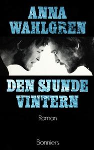 Den sjunde vintern (e-bok) av Anna Wahlgren