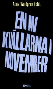 En av kvällarna i november : Noveller (e-bok) a