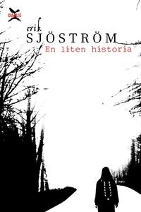 En liten historia (e-bok) av Erik Sjöström
