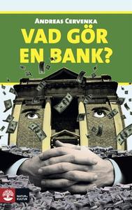 Vad gör en bank? (e-bok) av Andreas Cervenka