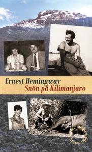 Snön på Kilimanjaro (e-bok) av Ernest Hemingway