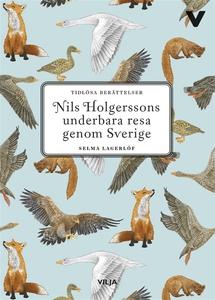 Nils Holgerssons underbara resa (lättläst) (lju