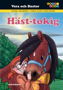 Häst-tokig (e-bok) av Anna Sellberg