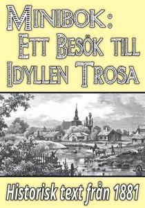 Minibok: Ett besök i idylliska Trosa år 1881 –