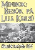 Minibok: Ett besök på Lilla Karlsö år 1875
