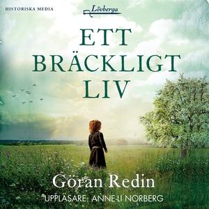 Ett bräckligt liv (ljudbok) av Göran Redin