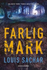 Farlig mark (e-bok) av Louis Sachar
