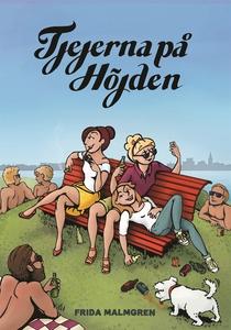 Tjejerna på höjden (e-bok) av Frida Malmgren