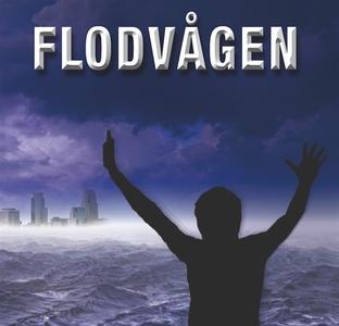 Flodvågen (ljudbok) av Anne Rooney