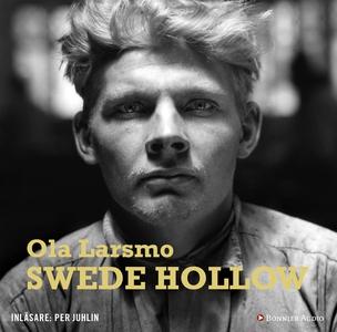 Swede Hollow (ljudbok) av Ola Larsmo