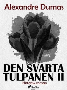 Den svarta tulpanen II (ljudbok) av Alexandre D