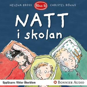 Natt i skolan (ljudbok) av Helena Bross