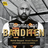 Mammas son banditen : en brutal roman om kriminalitet