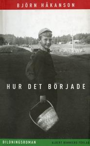 Hur det började : Bildningsroman (e-bok) av Bjö