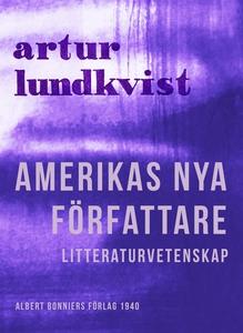 Amerikas nya författare (e-bok) av Artur Lundkv