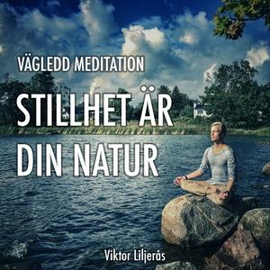Stillhet är din natur (ljudbok) av Viktor Lilje
