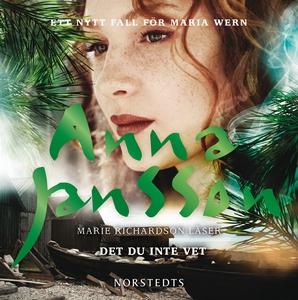 Det du inte vet (ljudbok) av Anna Jansson