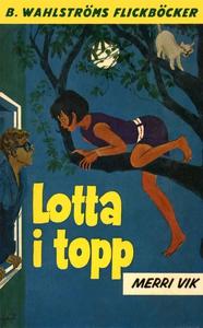 Lotta 19 - Lotta i topp (e-bok) av Merri Vik