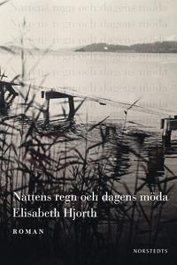 Nattens regn och dagens möda (e-bok) av Elisabe