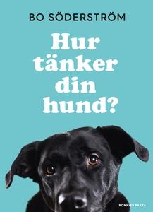 Hur tänker din hund? (e-bok) av Bo Söderström