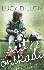 Allt jag önskade (e-bok) av Lucy Dillon
