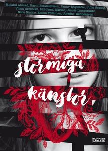 Stormiga Känslor (e-bok) av Idil Jama Warsar, J