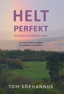 Helt perfekt (e-bok) av Tom Sörhannus