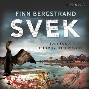 Svek (ljudbok) av Finn Bergstrand