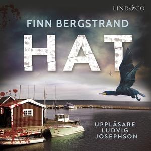 Hat (ljudbok) av Finn Bergstrand