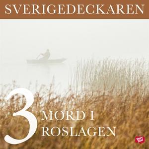 Mord i Roslagen (ljudbok) av Stig O. Blomberg