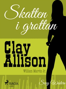Skatten i grottan (e-bok) av Clay Allison, Will
