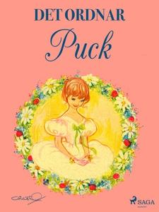Det ordnar Puck (e-bok) av Lisbeth Werner