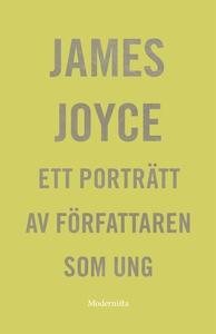 Ett porträtt av författaren som ung (e-bok) av