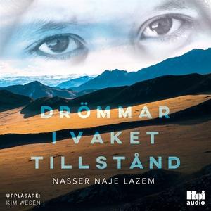 Drömmar i vaket tillstånd (ljudbok) av Nasser N